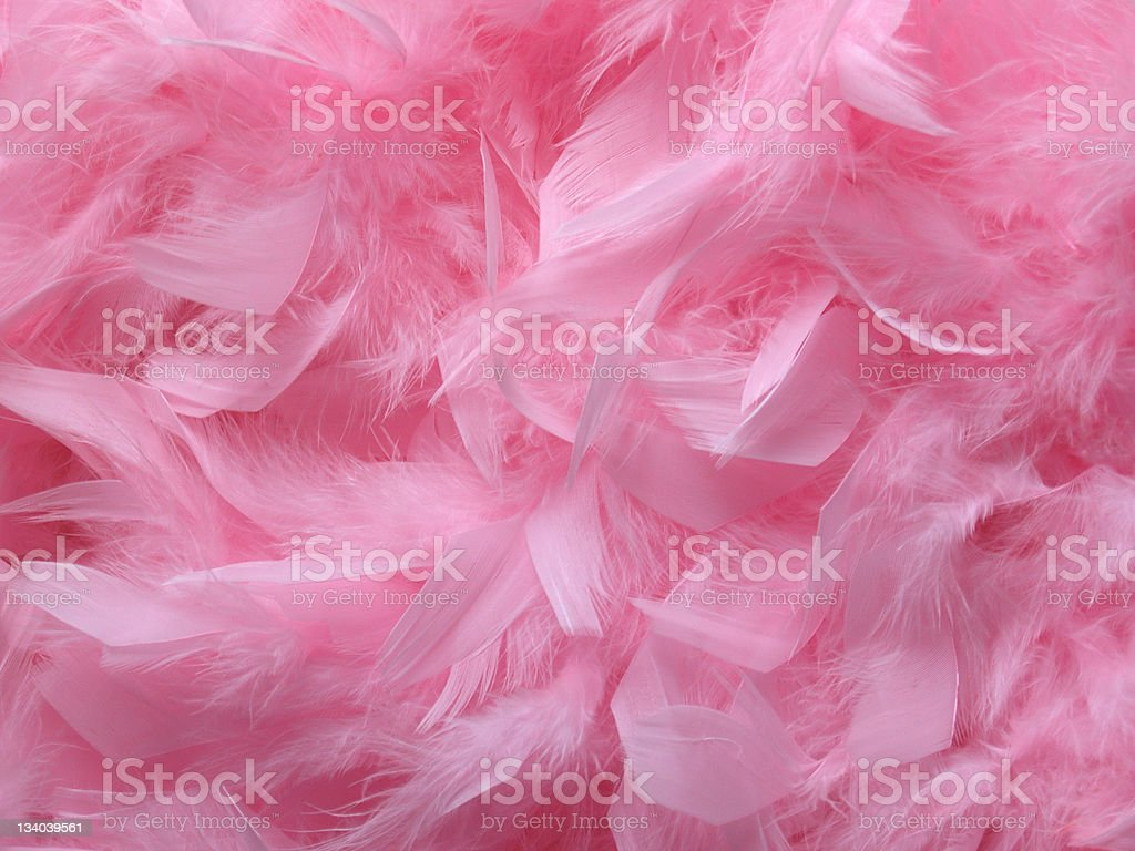 Pink Feather Background stock photo