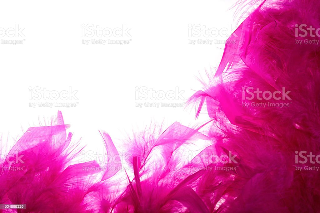 Pink feather boa on white background stock photo