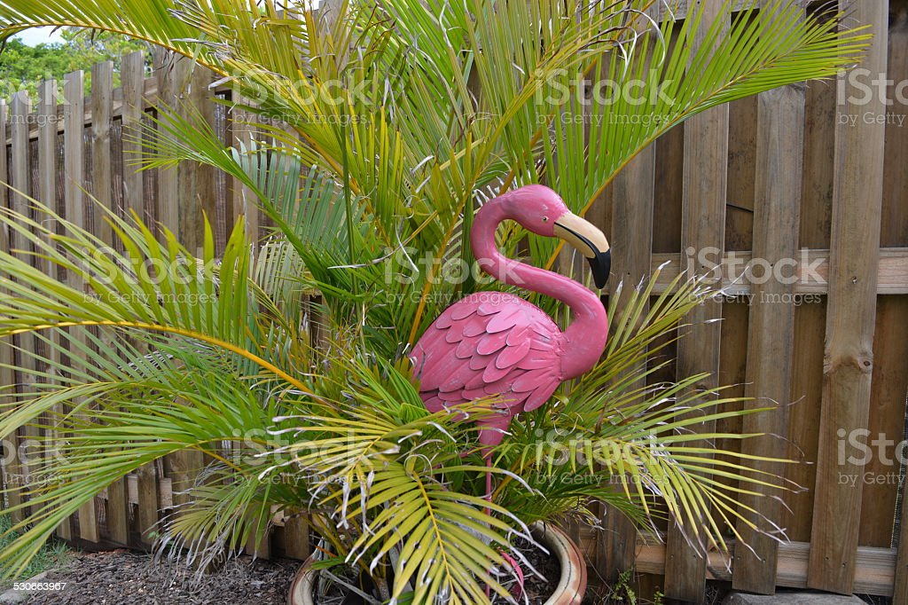Pink flamingo in garden stock photo