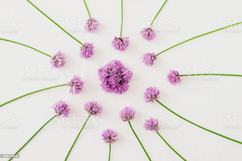 Pink flowers arrangement, mandala stock photo