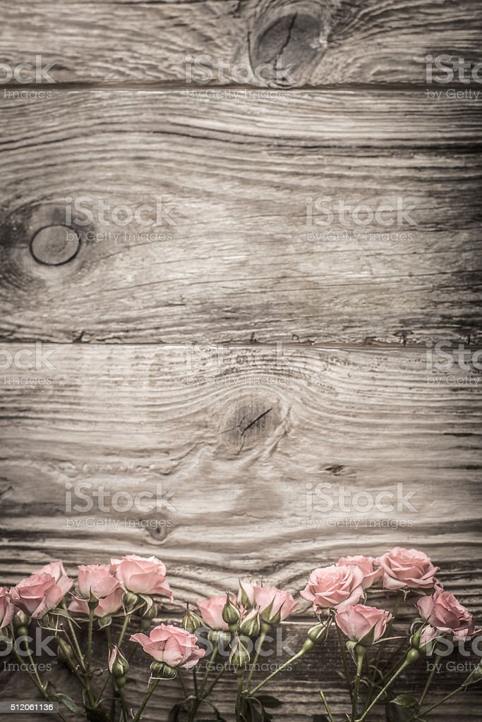 Pink flowers on gray wooden boards stock photo