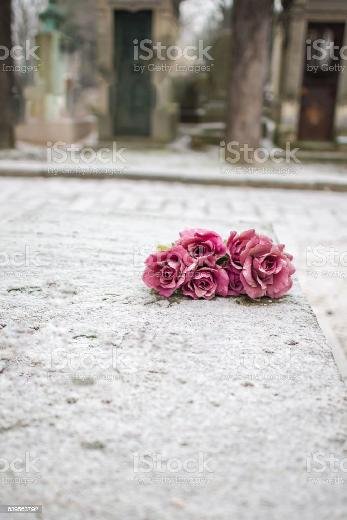 Pink flowers under snow on a grave in Paris stock photo