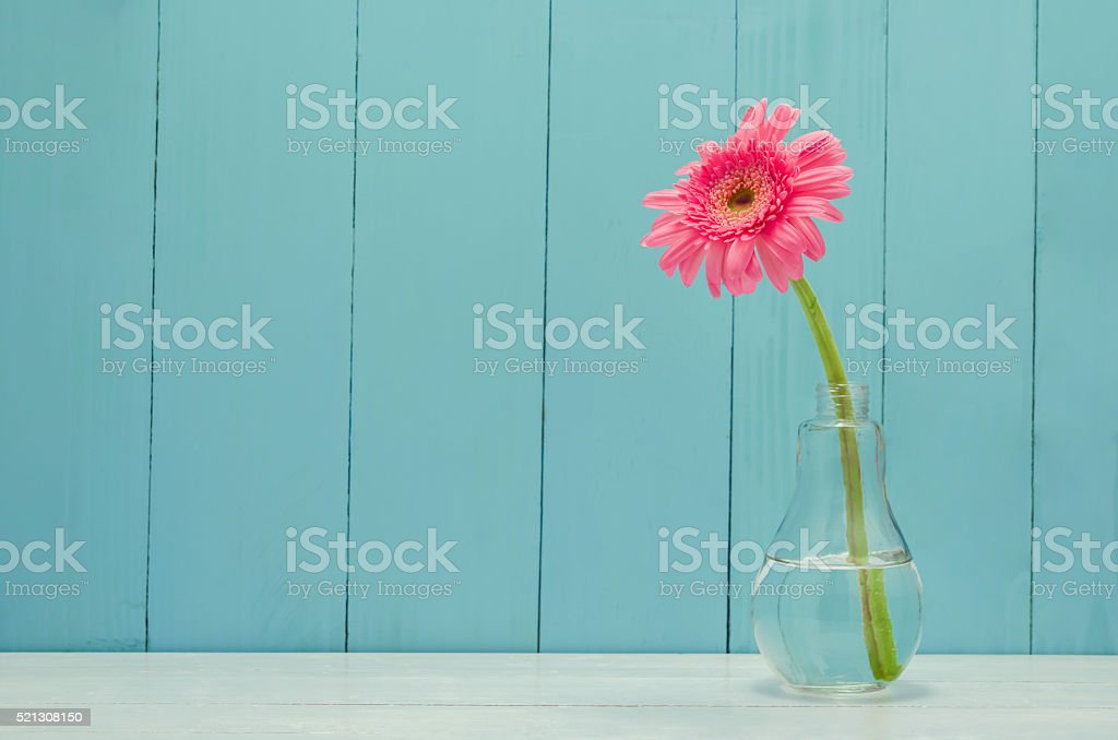 Pink Gerbera daisy flower in bulb glass vase stock photo