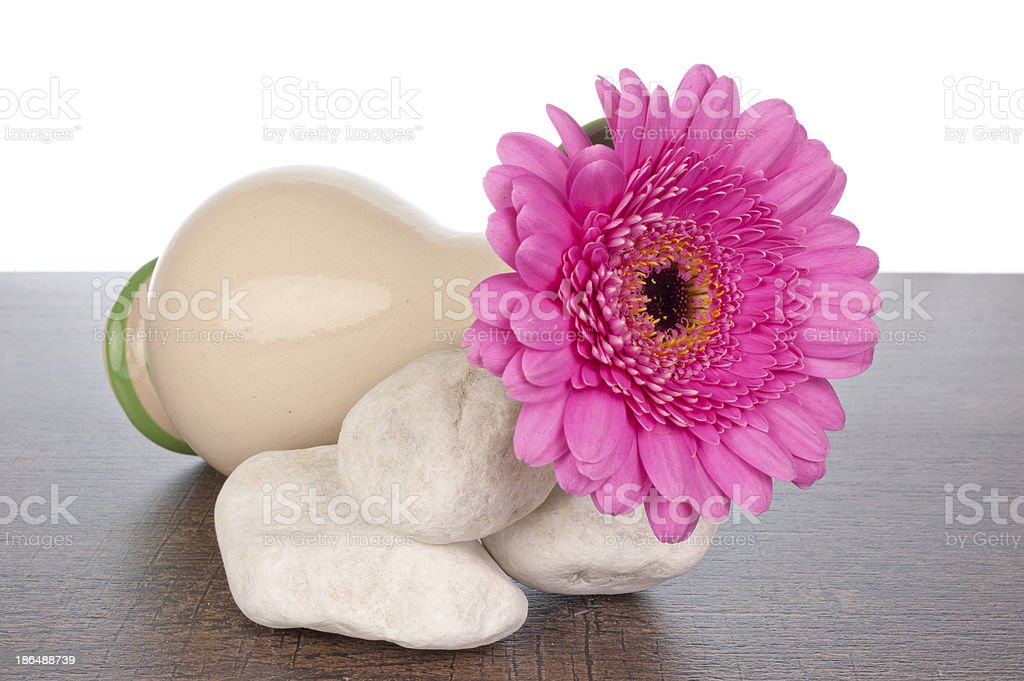 Pink Gerberas in vase on rocks royalty-free stock photo