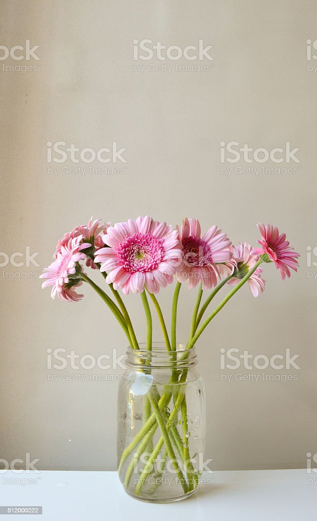 Pink gerberas stock photo