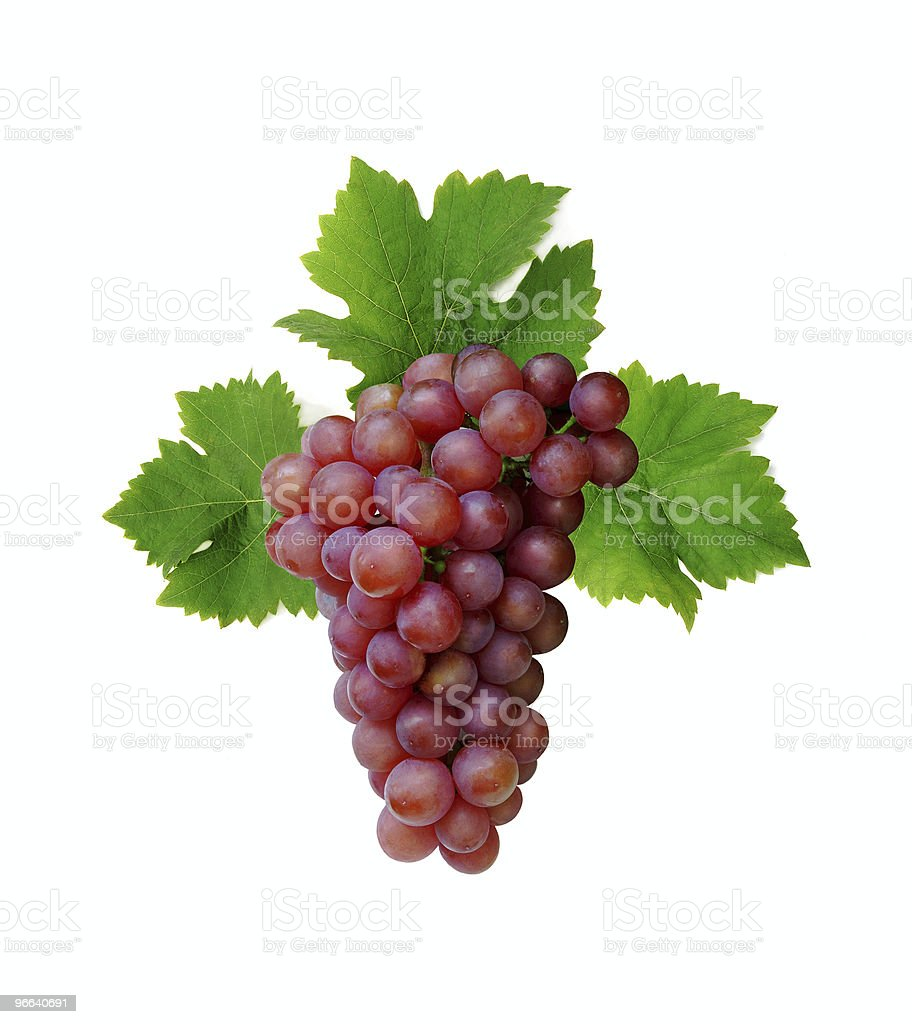 Pink grape cluster stock photo