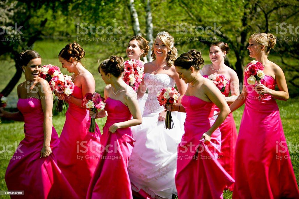 Pink Happy Bride and Bridesmaids Wedding Dress royalty-free stock photo