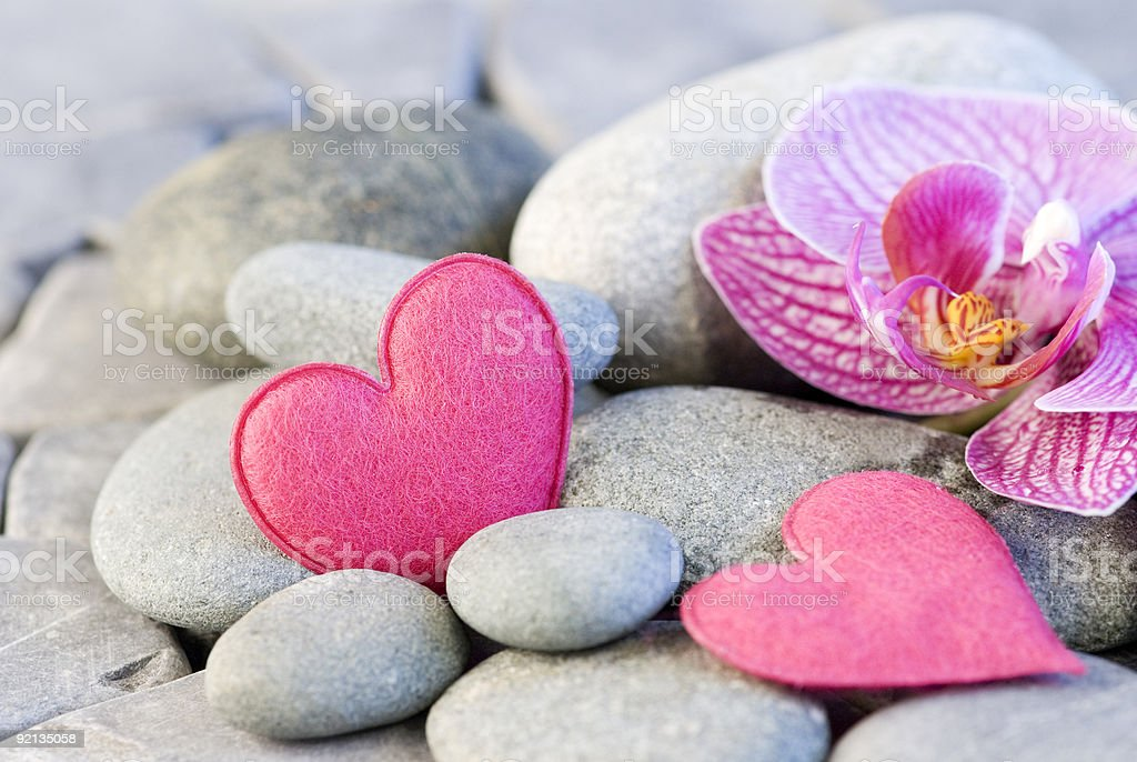 pink heart and orchid royalty-free stock photo