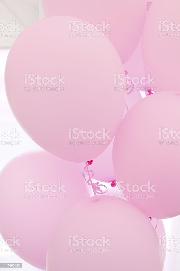 Pink helium filled balloons royalty-free stock photo