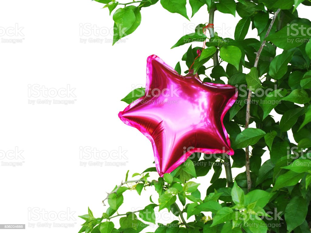 Pink inflatable balloon in the form of a star on green branches, isolated on a white background. stock photo