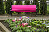 Pink kissing bench in Victoria, British Columbia