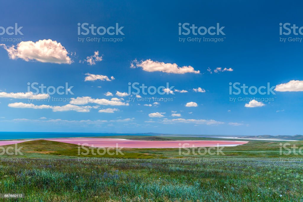 Pink lake in the steppe near the sea stock photo