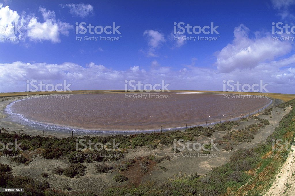 Pink lake royalty-free stock photo