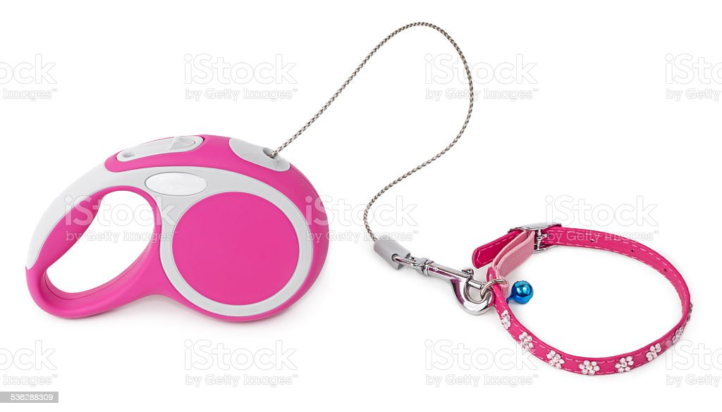 Pink leash for dog with collar stock photo