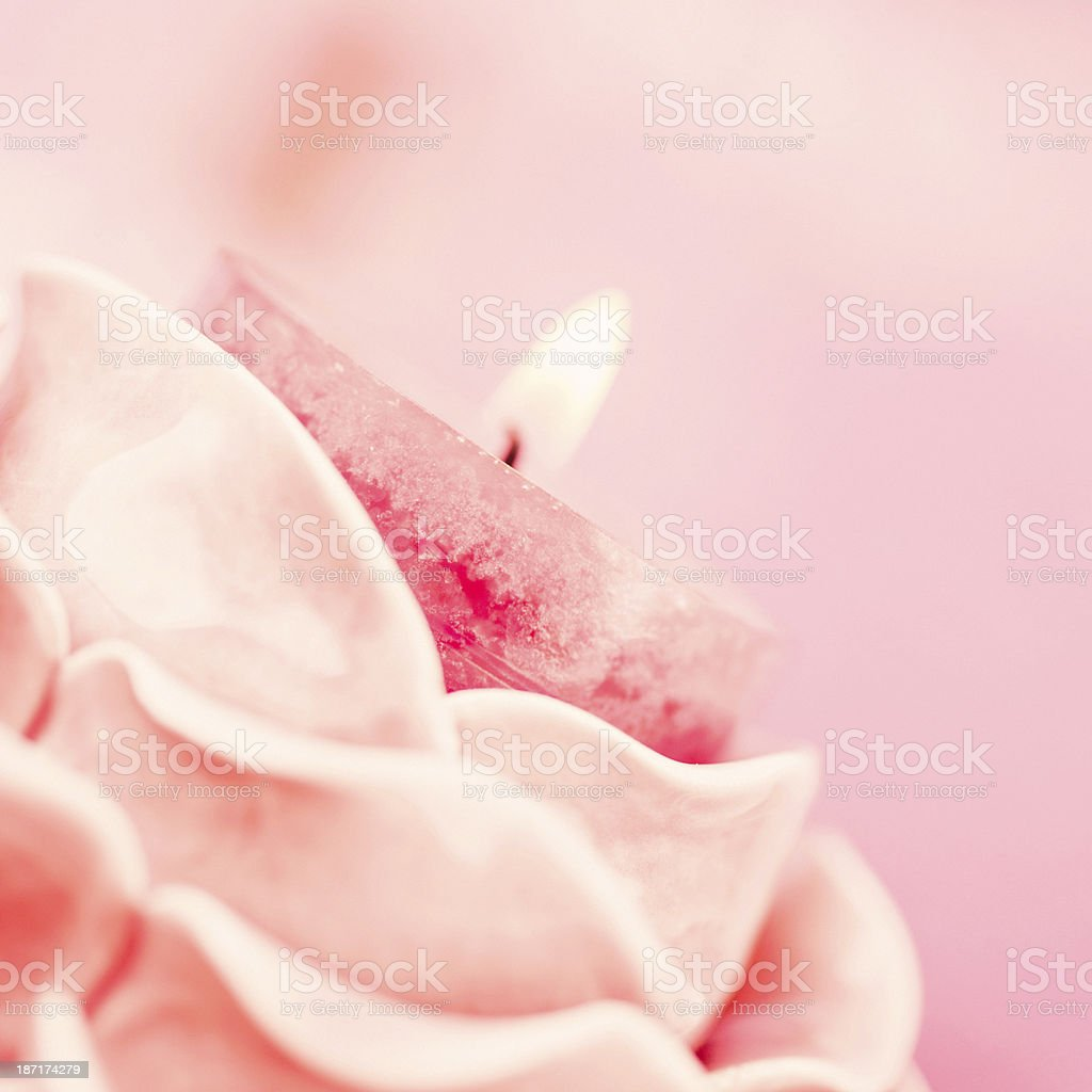 Pink Memorial Candle royalty-free stock photo