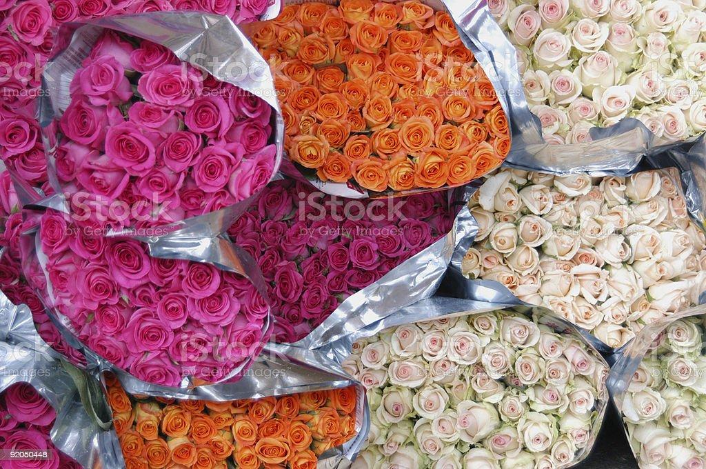pink, orange and white roses royalty-free stock photo