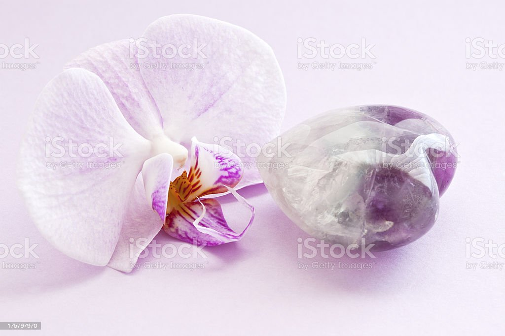 Pink Orchid and quartz. stock photo