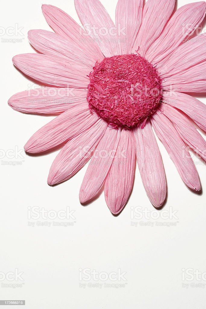 pink paper flower decoration royalty-free stock photo