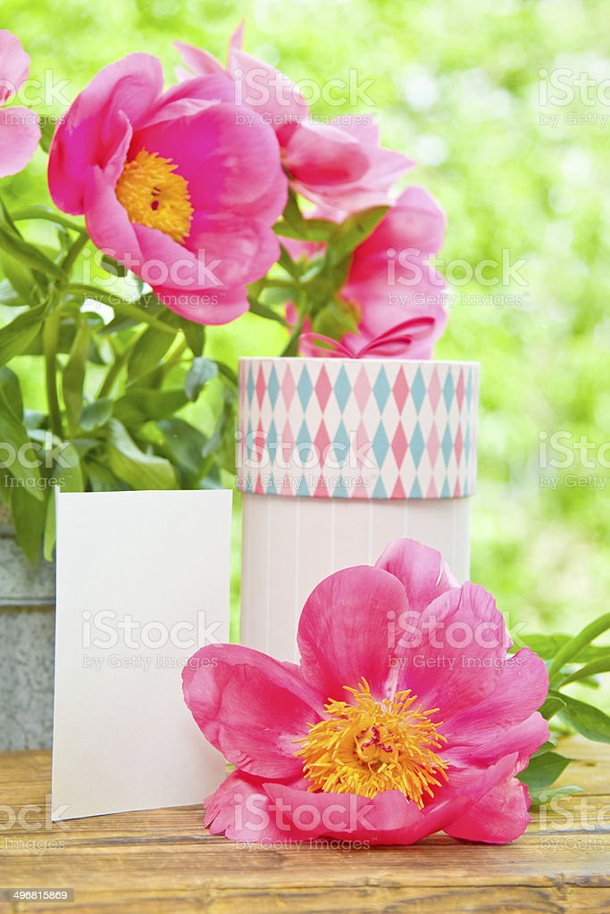 Pink peonies in vase, gift and empty card stock photo