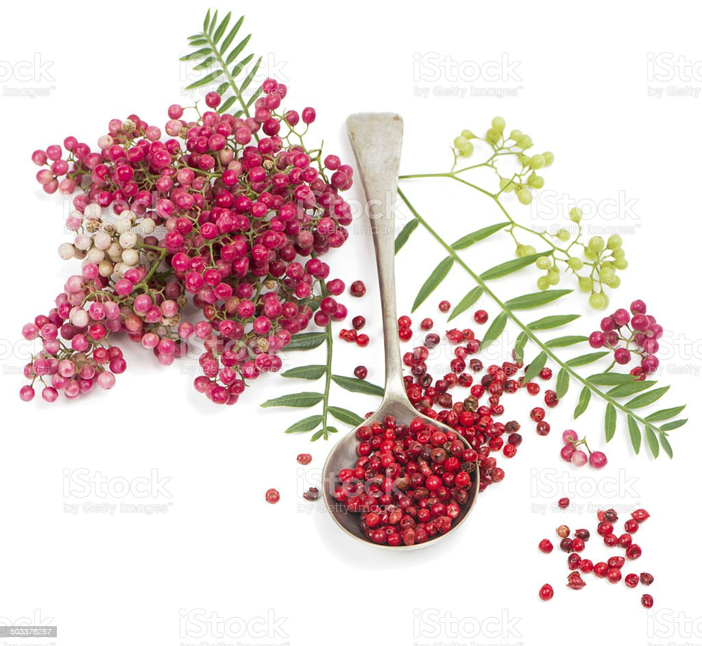 pink peppercorn in a spoon stock photo