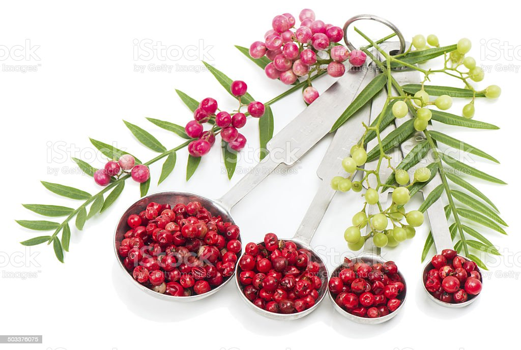 Pink Peppercorns, fresh and dry stock photo