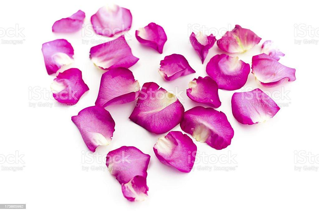 Pink petals heart royalty-free stock photo