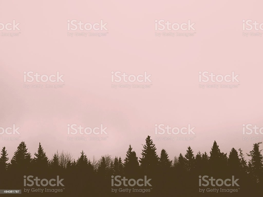 Pink Photographic Filter Sky and Pine Tree Line Background stock photo