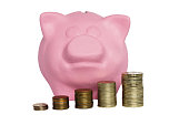 Pink pig piggy bank with coins