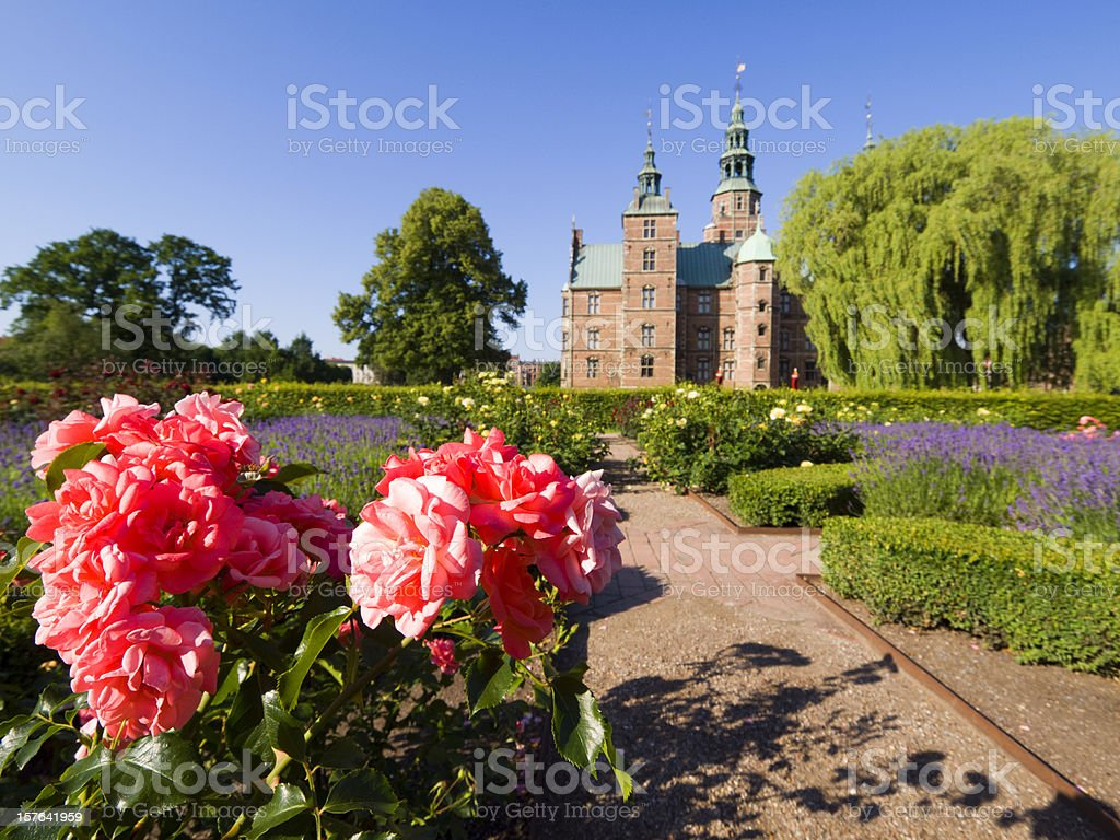 Pink rose and Rosenborg castle stock photo