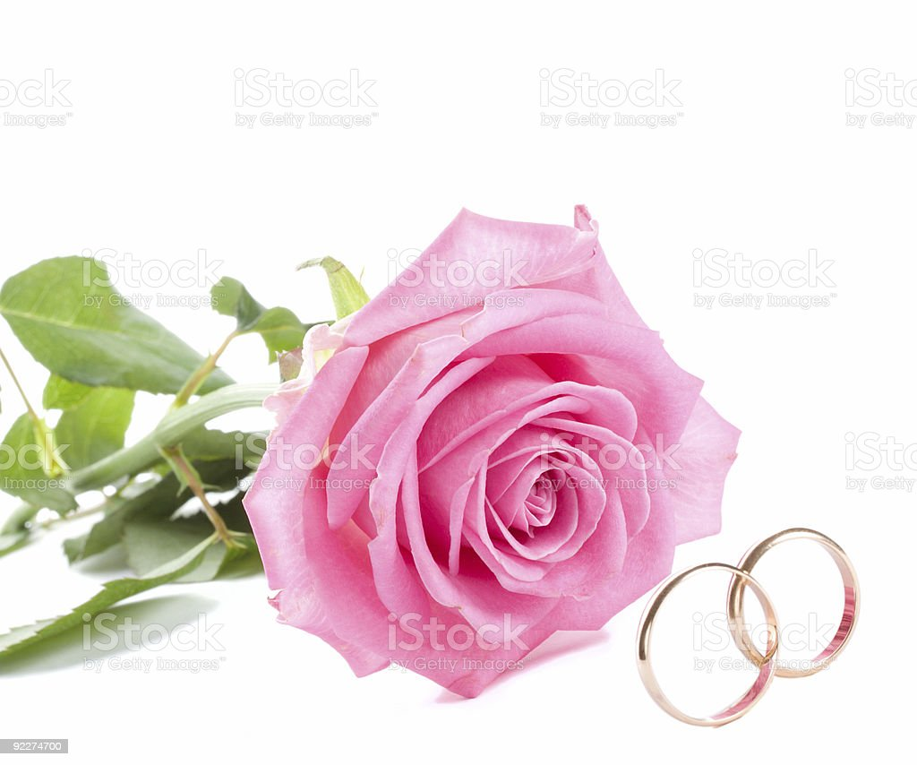 pink rose and wedding rings royalty-free stock photo