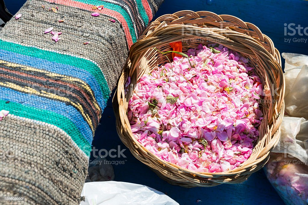 Pink rose blossom in basket stock photo
