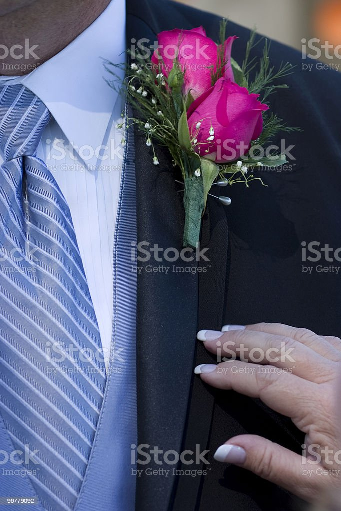 Pink Rose Boutonniere royalty-free stock photo