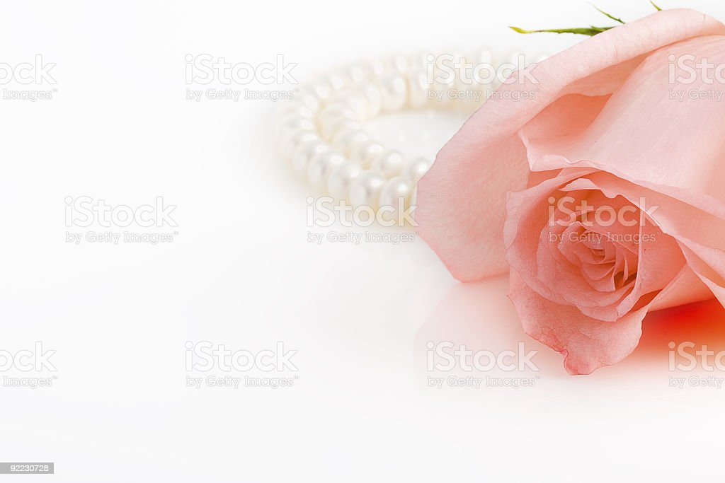 pink rose bud with pearl necklace royalty-free stock photo