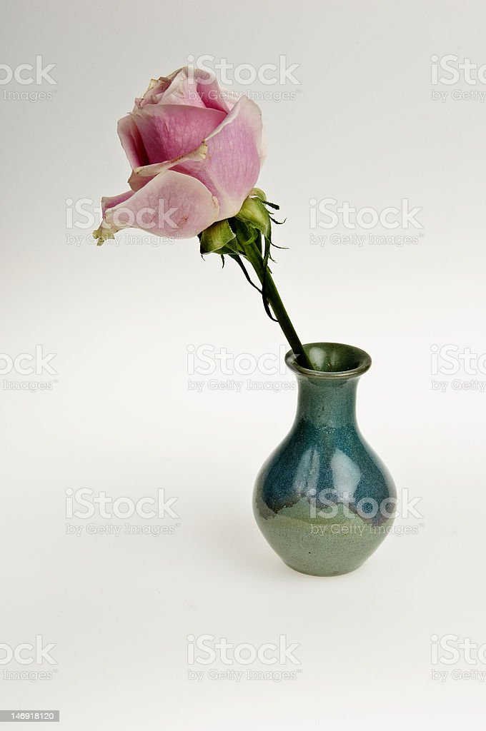 Pink rose in vintage green vase stock photo