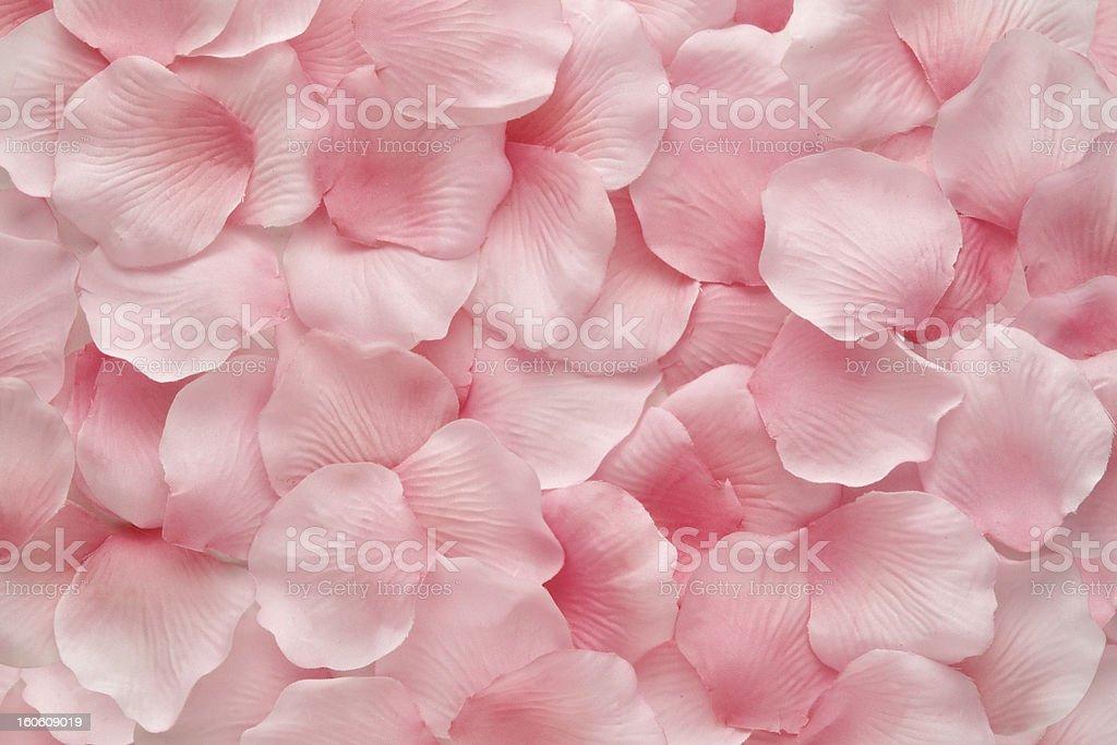 Pink Rose Petals royalty-free stock photo