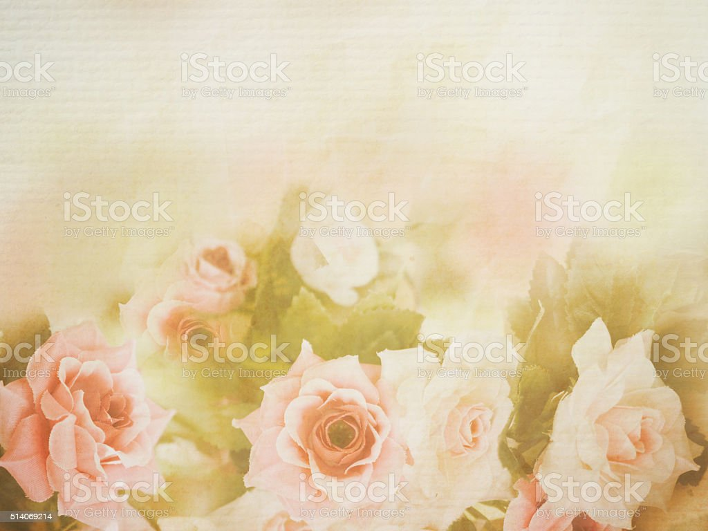 Pink rose soft style stock photo