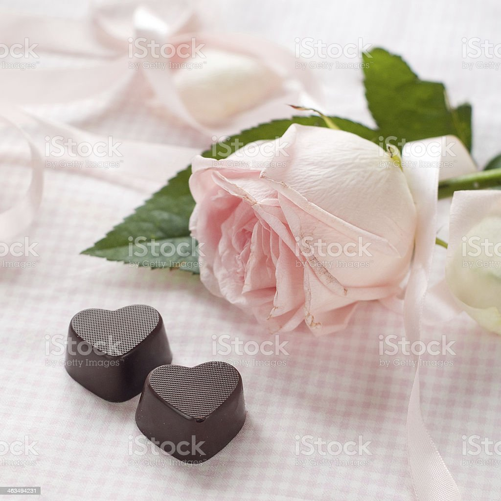 Pink rose with chocolate candy royalty-free stock photo