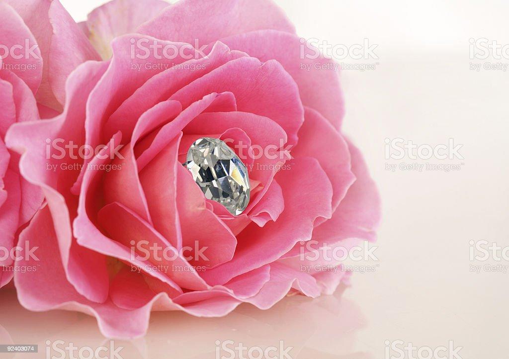 Pink Rose with Diamond royalty-free stock photo
