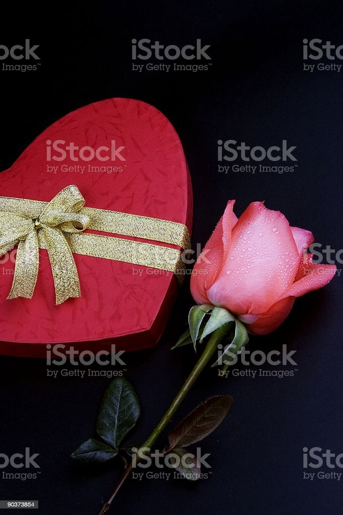 Pink Rose With Gift Box royalty-free stock photo