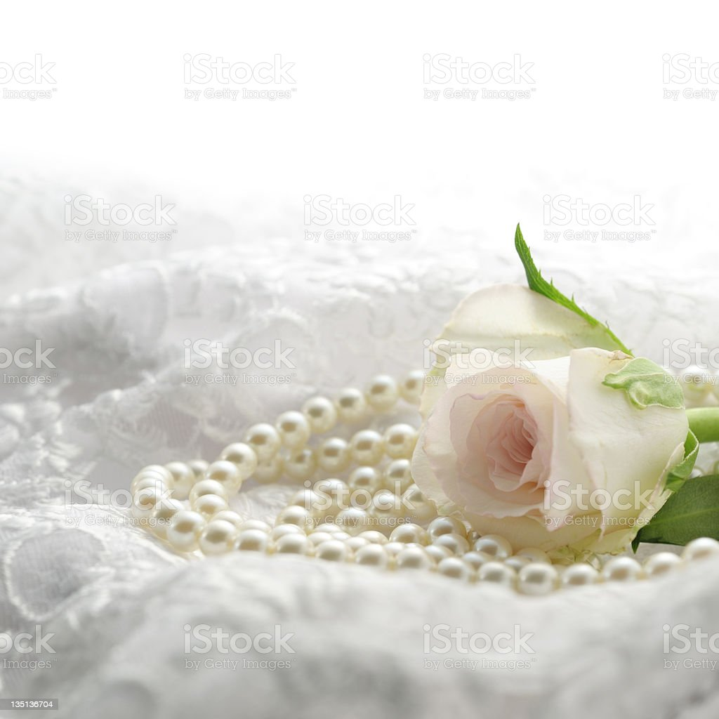 Pink rose with pearls stock photo
