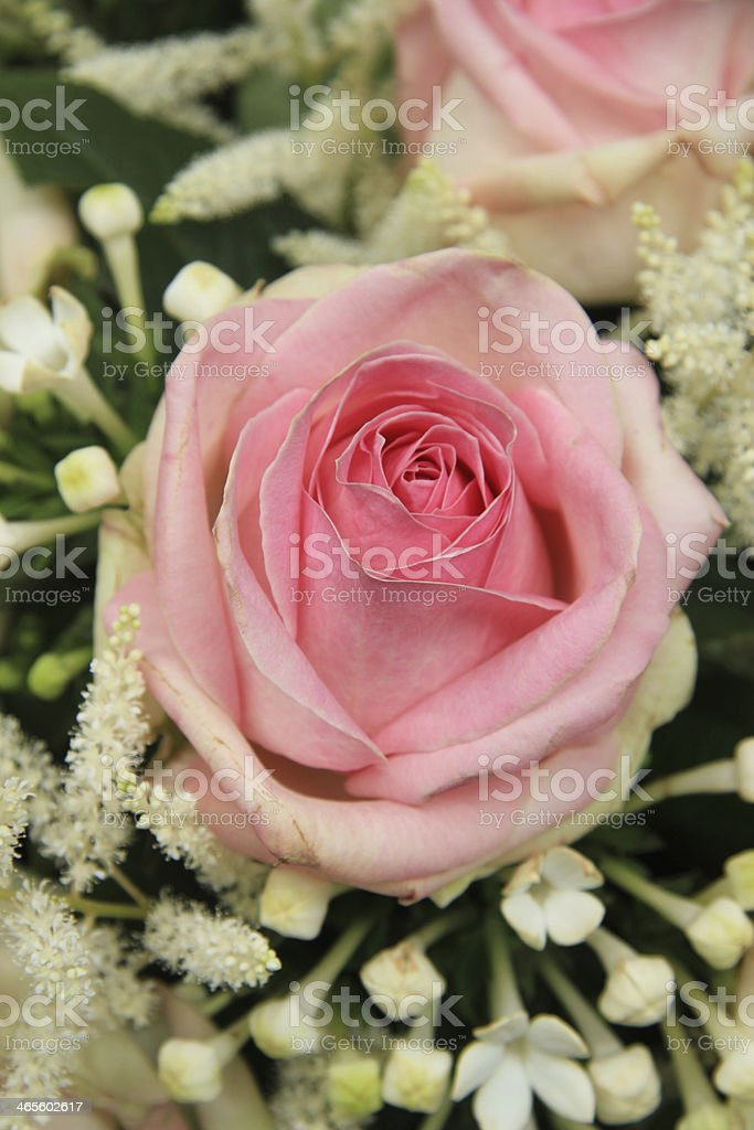 Pink roses and stephanotis in bridal bouquet stock photo