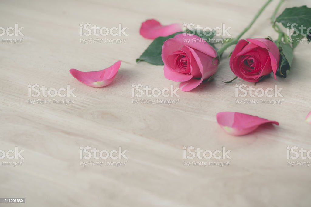 Pink roses in valentine day, romantic background (vintage effect) stock photo
