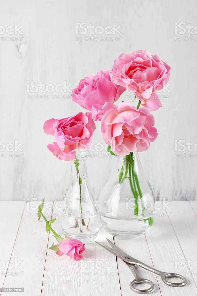Pink roses in vases stock photo