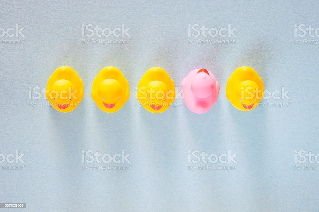 Pink rubber duck standing out from the common yellow ones stock photo