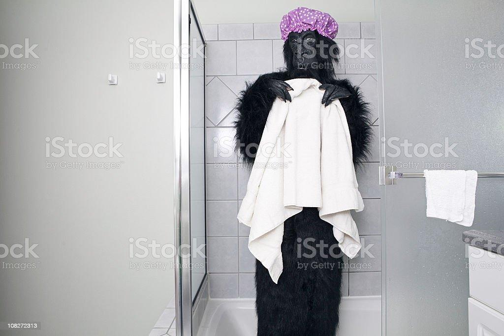 Pink Showering Gorilla royalty-free stock photo
