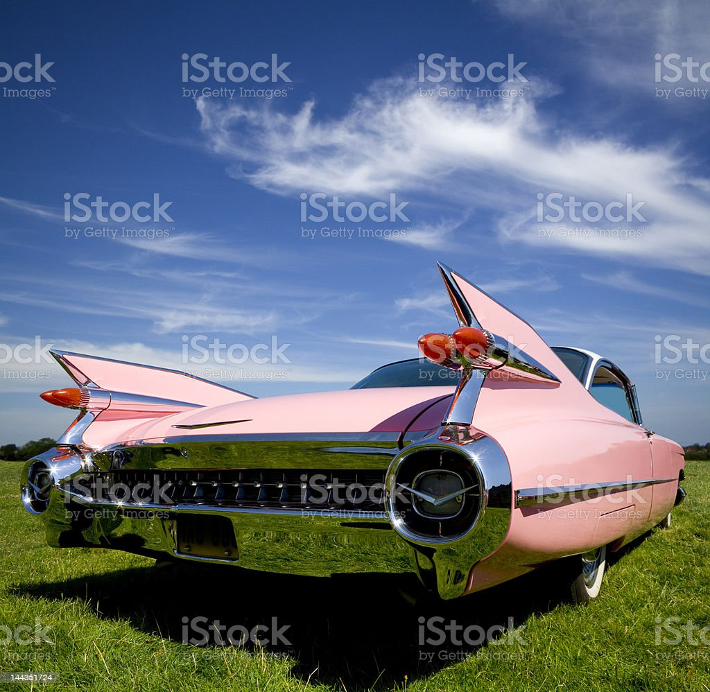 Pink Tail stock photo