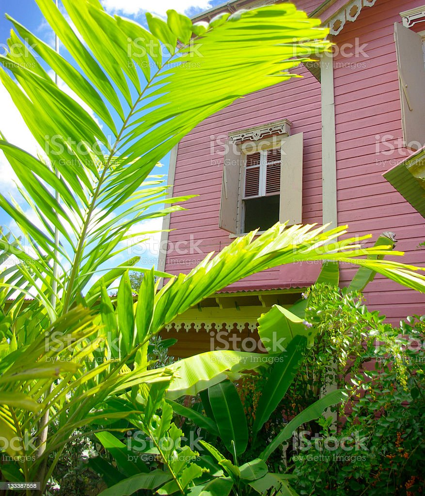 pink tropical plantation house and palms stock photo