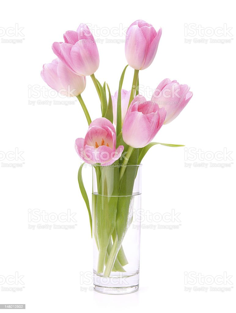 Pink tulips bouquet in vase royalty-free stock photo