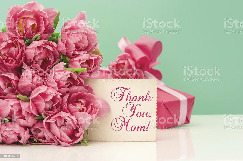 Pink tulips, gift ang greeting card stock photo