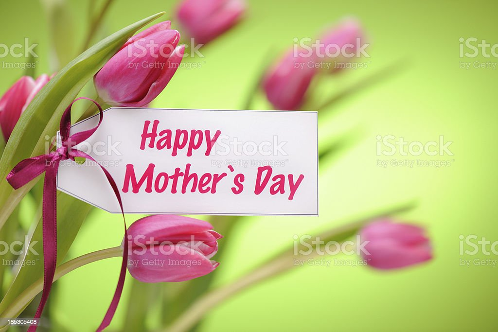 Pink tulips on green with mothers day card royalty-free stock photo